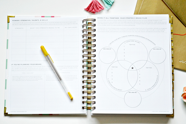 picture regarding The Day Designer referred to as My 2015 Preference of Planner: The Working day Designer Champagne Wants